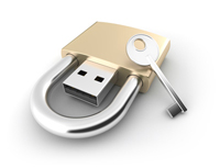 USB Card If you want to protect your data from deletion by the final user, you need a Flashbay Dual Zone Flash Drive.